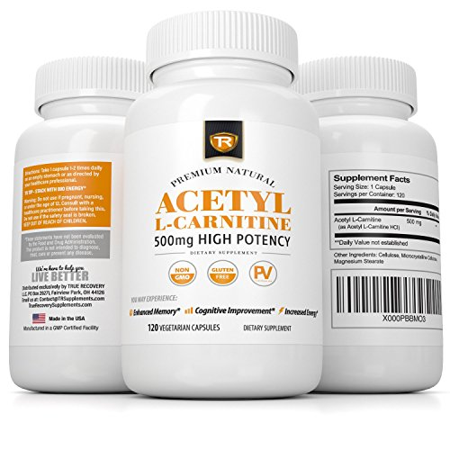 Acetyl L Carnitine 500mg Alcar Supports Better Brain Function, Energy, and Memory Related Tasks 120 Vegetarian Capsules