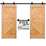 CCJH Sliding Barn Door Hardware Steel Double Door Antique T-Shaped Wood Door Hardware Track Set Black