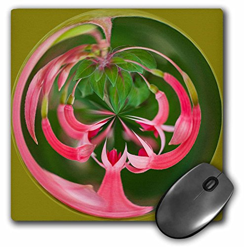 3dRose Roni Chastain Photography - circle of fuschia plant, pink - MousePad (mp_192914_1)