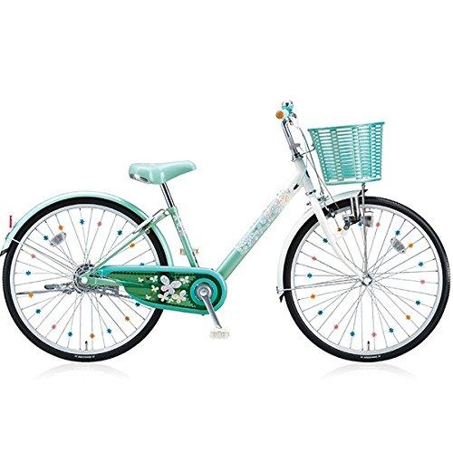 ブリヂストン(BRIDGESTONE) 子供用自転車 エコパル EP00 ミント 20インチ B076LDD5KD