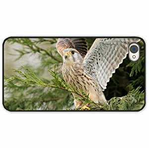 diy zhengiphone 5/5s Black Hardshell Case predator wings wood sweep Black Desin Images Protector Back Cover