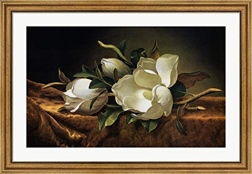 (Magnolias on Gold Velvet Cloth by Martin Johnson Heade Framed Art Print Wall Picture, Wide Gold Frame, 40 x 27)