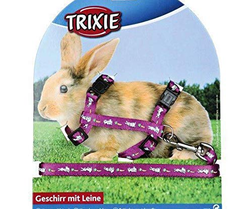 De Nylon. Conejo con Arnés 25-44 / 1cm de 1,25 m, Trixie, Correa ...