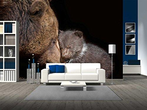 Brown Bear Ursus Arctos