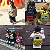BIGHAS Lightweight Toddler Kids Backpack with Chest