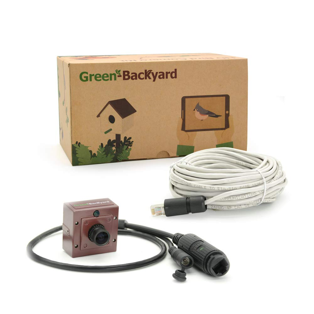 Green-Backyard IP PoE Bird Box Bird House Camera with Audio, HD 1080P with Invisible Infraded, View on Mobile Phone, Tablet or PC. GOLBONG