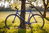Fyxation Pixel Fixed Gear/Single Speed Bicycle
