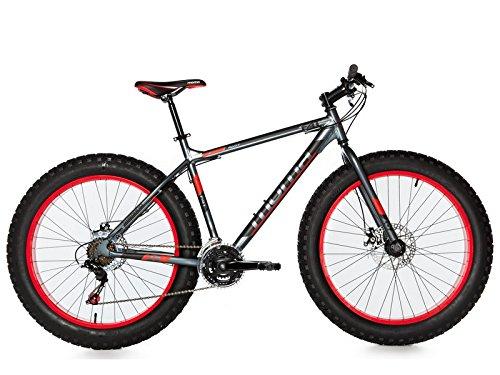 Moma Bikes FAT bicicleta de montaña