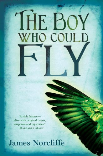 Read Online The Boy Who Could Fly pdf