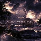 Acid Wolfpack (Original Mix)