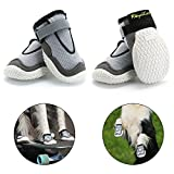 RoyalCare Paw Protector Dog Boots, Set of 4 Breathable Hole and Skid-Proof Dog Shoes for Large Dogs in Hot Summer (5#)