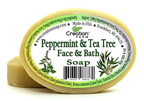 Peppermint  Tea Tree Soap 2 Bar Pack Face Complexion Handmade Herbal Soap Botanically Enriched Creation Farm