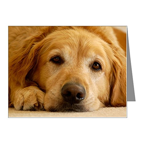 CafePress - Golden Retriever Note Cards (Pk of 20) - Blank Note Cards (Pack of 20) Matte ()