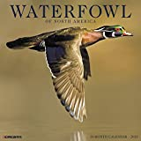 Waterfowl of North America 2018 Calendar