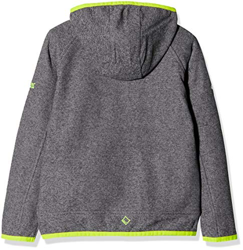 Regatta Childrens Totten Full-zip Stretch Hooded Fleece