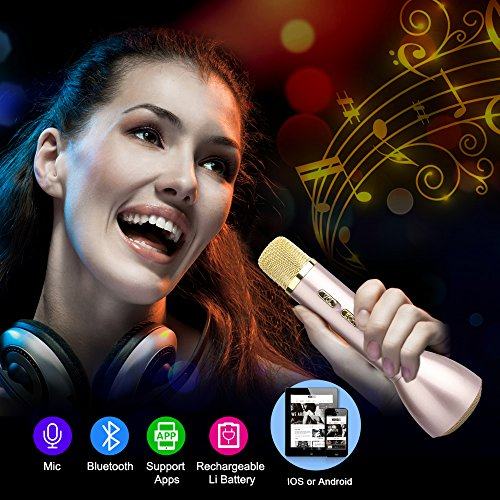 Wireless Microphones Portable Bluetooth Speakers