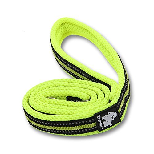 Green L(length 78.7\ Green L(length 78.7\ Fosinz Reflective Padded Comfortable Dog Leash Outdoor Adventure Durable Dog Lead (L(Length 78.7 ), Green)