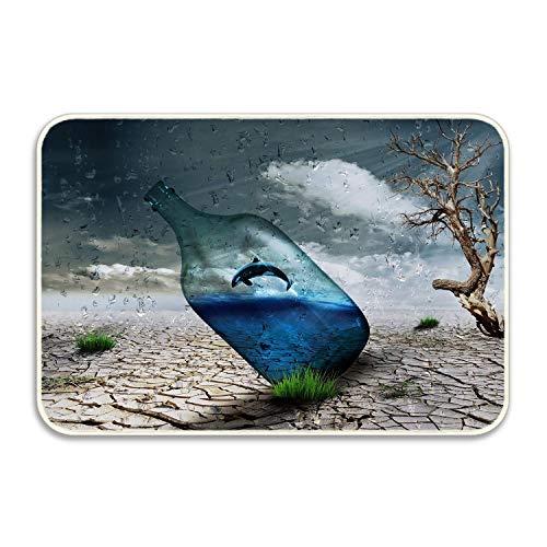 Puyrtdfs Desert Bottle Dolphin Wind Art Rug Indoor/Outdoor Door Shoe Scraper Entryway,Garage and Laundry Room Floor Mat,16X24in