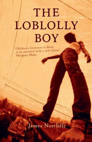 Book cover for Loblolly Boy