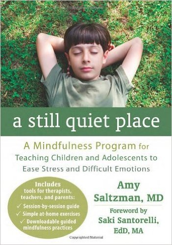 A Still Quiet Place: A Mindfulness Program for Teaching Children and Adolescents to Ease Stress and Difficult... (Paperback) - Common