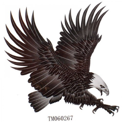 Eagle Temporary Tattoo (SPESTYLE waterproof non-toxic temporary tattoo stickersWaterproof men and women fashion sexy temp tattoos eagles)