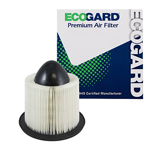 ECOGARD XA4878 Premium Engine Air Filter Fits Ford F-150, Expedition, E-350 Super Duty, F-250 Super Duty, E-250, Mustang, E-150 / Lincoln Navigator / Ford E-150 Econoline, E-250 Econoline