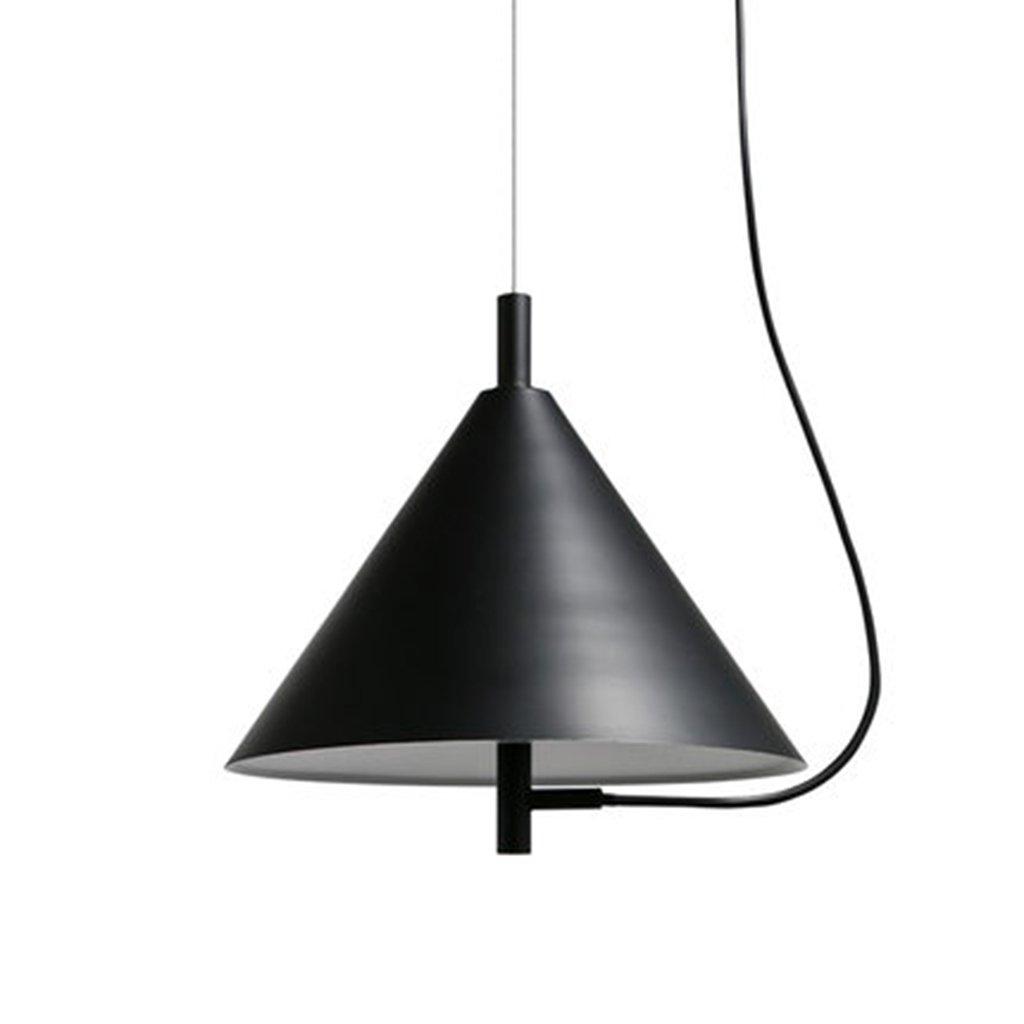 シーリングライト 天井照明モダニズム照明LEDの鉄のペンダントランプ [エネルギークラスA ++] (Color : White light)  White light B07TVHM6VK
