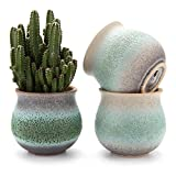 T4U 2.75 inch Ceramic Summer Trio No.1 Succulent Plant Pot/Cactus Plant Pot Flower Pot/Container/Planter Green Package 1 Pack of 3 Review
