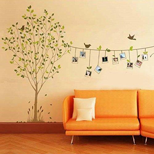 Niwota Tree & Photo Frame DIY Art Decal Removable Wall Sticker Wall Tattoos Wall Transfers
