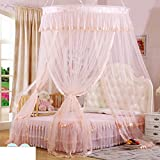 Elegant Double Sucker,Princess Hanging Mosquito Nets/Fashion Three Open The Door£¬thickened To Wear Lace Mosquito Nets/Simple Daughter Bed To Increase Mosquito Nets-D F