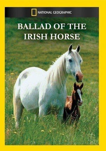 Ballad of the Irish Horse (Irish Horse)