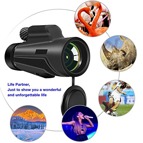 Monocular Telescope, 12x50 High Power BAK4 Prism Telescope, Portable Waterproof Spotting Scope with Quick Smartphone Holder Tripod and Neck Strap for Outdoor Bird Watching Hunting Hiking by highbrain (Image #2)