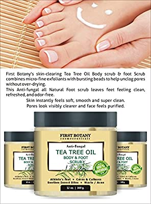 100% Natural Anti Fungal Tea Tree Oil Body & Foot Scrub 12 oz. with Dead Sea Salt - Best for Acne, Dandruff and Warts, Helps with Corns, Calluses, Athlete foot, Jock Itch & Body Odor