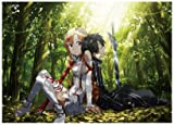 1 X Anime Sword Art Online - High Grade Laminated Poster