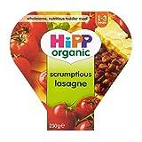 Hipp Organic Scrumptious Lasagne 1-3 Years 230G