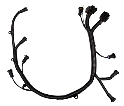 Amazon Com Ficm Engine Fuel Injector Complete Wire Harness