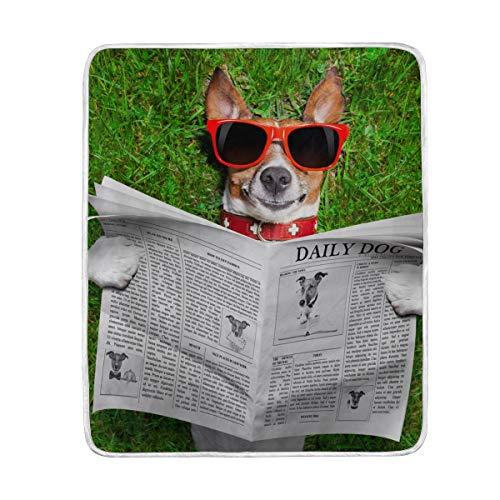 Amazon.com: My Daily Cool Dog Reading Newspaper Throw