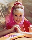 大きな写真、TV「かわいい魔女ジニー」バーバラ・イーデン鮮明写真