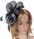 Fascinator Feather Organza Flower Cocktail Tea Party Hair Clip Derby Headband (Style 1 Black)