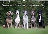 Lousiana Catahoula Leopard - The Nationale State Dog of Louisiana (Wall Calendar 2019, 14 Pages, Size DIN A3 = 11.7 x 16.5 inches)