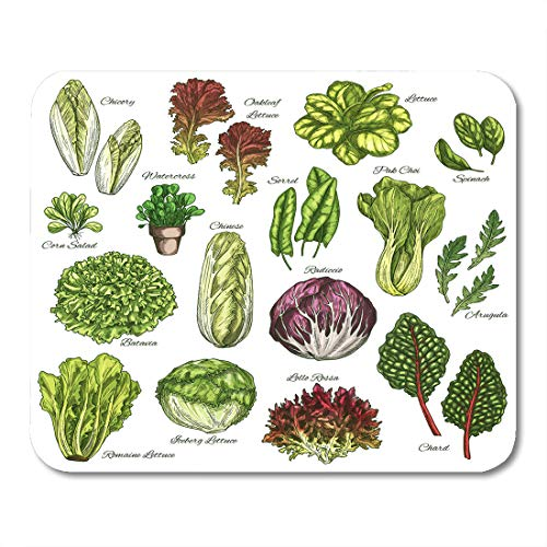 "Nakamela Mouse Pads Salads and Leafy Vegetables Sketch Chicory Oakleaf Lettuce Sorrel and Pak Choi Farm Garden Spinach Mouse mats 9.5"" x 7.9"" Mouse pad Suitable for Notebook Desktop Computers"