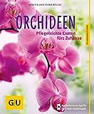 Orchideen: Pflegeleichte Exoten fürs Zuhause