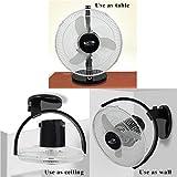 """OSCAR Gusto 12"""" All Purpose 3 in1 (Ceiling,Wall,Table) Cabin Fan (Black)"""