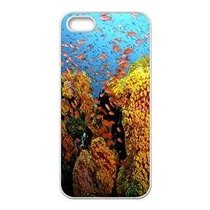 SeaWorld Unique Design Case for Iphone 5,5S, New Fashion SeaWorld Case