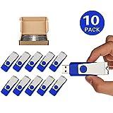 TOPSELL 10 Pack 2GB USB Flash Drives Flash Drive Flash Memory Stick Swivel USB 2.0 (2G, 10 PCS, Blue)