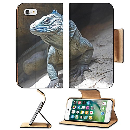 MSD Premium Apple iPhone 7 Flip Pu Leather Wallet Case Closeup of the Endangered Blue Grand Cayman Iguana IMAGE 20002168 (Scale Animal Grand Wildlife)