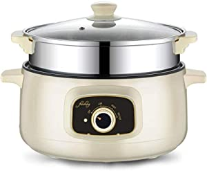 FanCheng Electric Skillet, 4-in-1 Non-Stick Stainless Multifunctional Hot Pot Noodles Rice Cooker Steamed Egg Soup Eggs Frying Pot, Small Electric Grill Pot for Home/Dormitory (2.6 L, with Steamer)