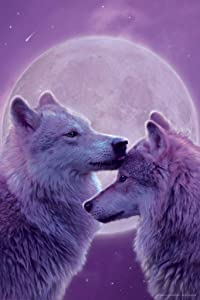 Loving Wolves by Vincent HIE Nature Cool Wall Decor Art Print Poster 24x36