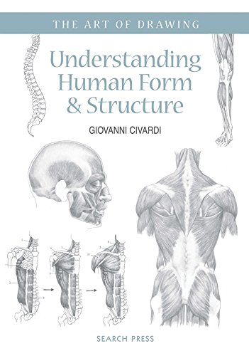 Art of Drawing: Understanding Human Form & Structure