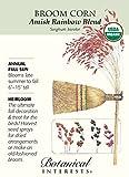 amish corn broom - Amish Rainbow Broom Corn - 1.5 Grams - Organic